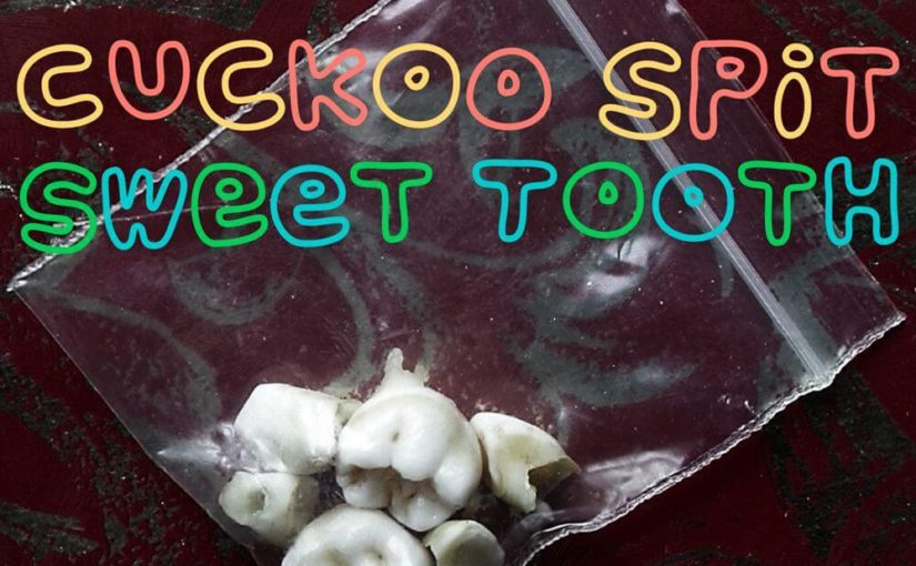 181 / Cuckoo Spit: Sweet Tooth
