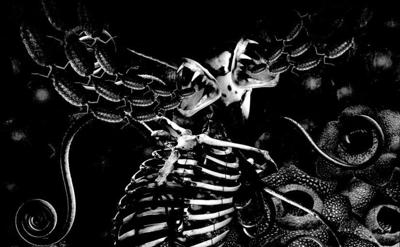 200.3 / Cardigan of Wasps – Carnivore